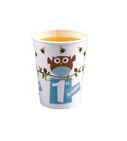 Little Owl Boy 1st Birthday Party Cups